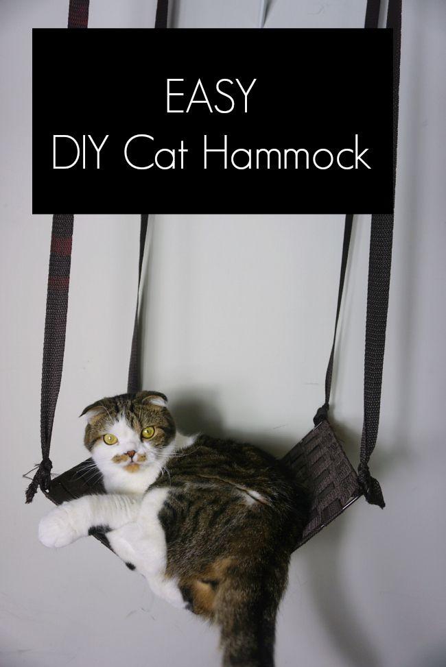 Easy Diy Cat Hammock Winkie S World Pinterest Cats Cat