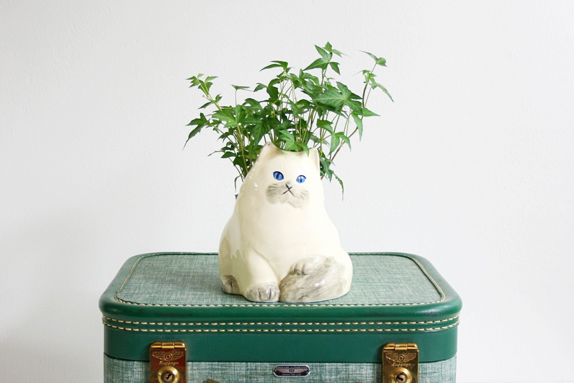 Mid Century Takahashi Cat Planter / Vintage White Ceramic Kitten Planter