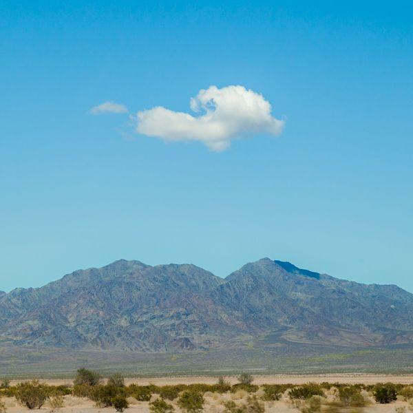 Arizona baby! Shot on my way to golf!