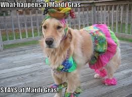 Funny Mardi Gras Quotes Funny Quotes And Sayings Via Relatablycom