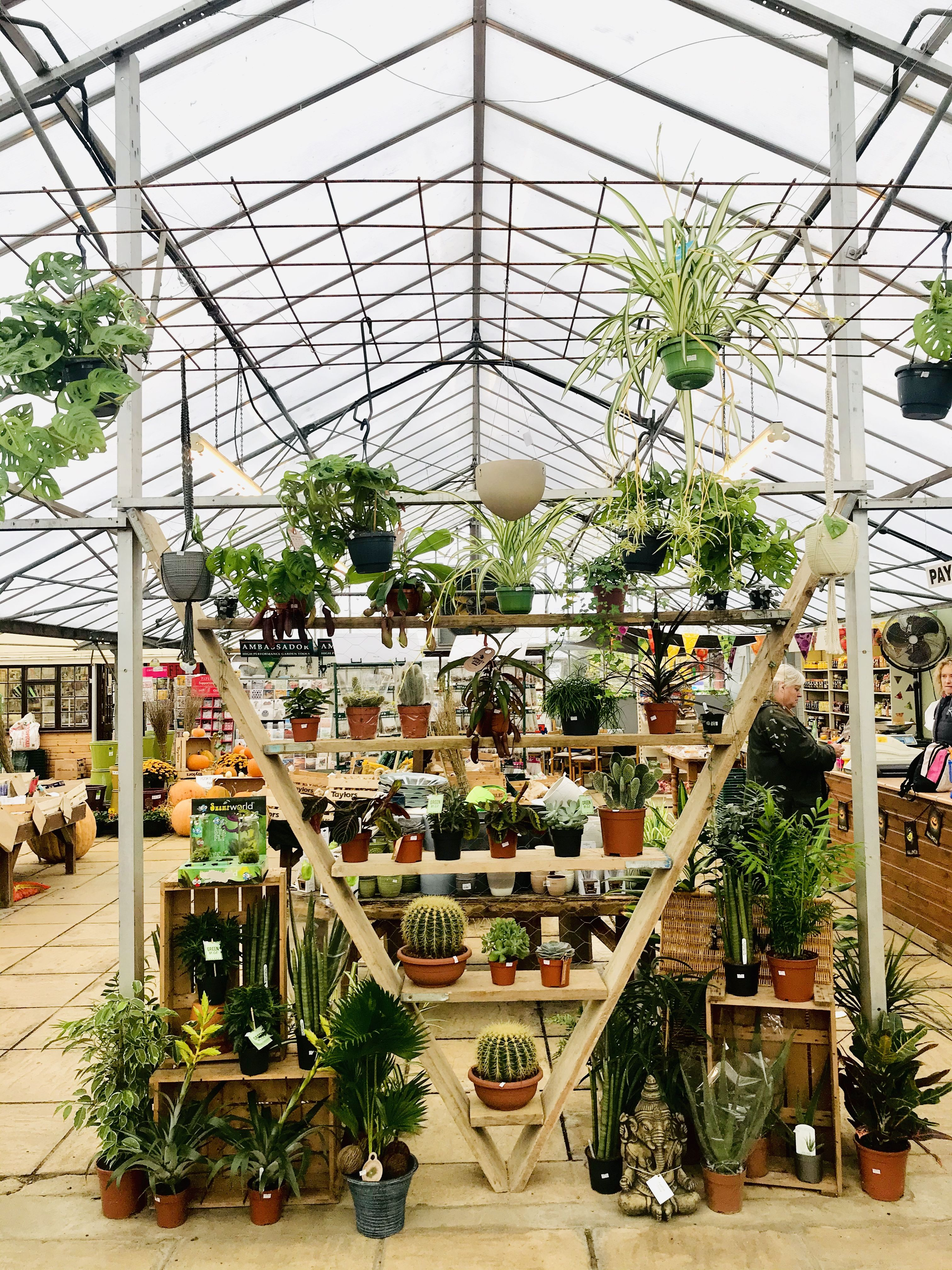 So Much Effort And Work Has Gone Into This Amazing Garden Centre Houseplant Display Garden Center Displays Garden Center Indoor Plants