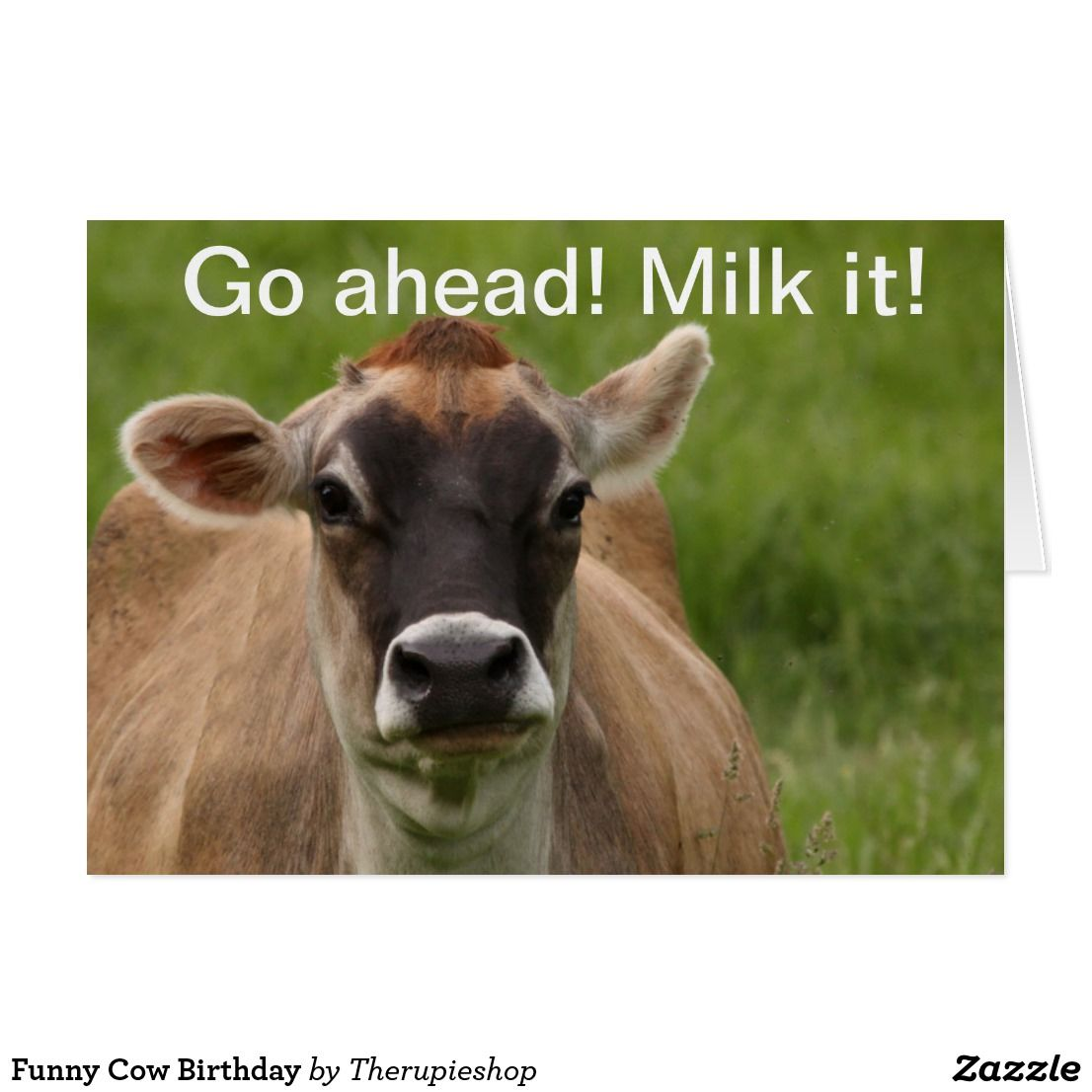 Funny Cow Birthday The Rupie Shop Favorite Birthday Cards