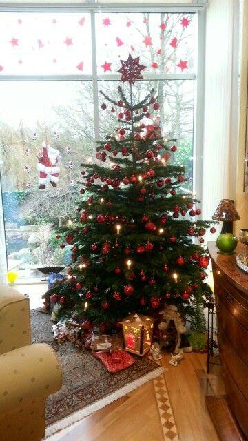 🎄Weihnachtsbaum/christmas tree  2014