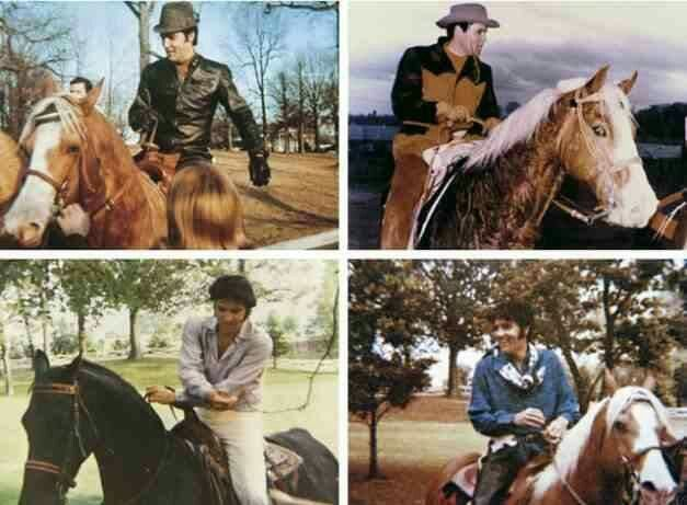 One of the things Elvis loved, horseback riding :-)