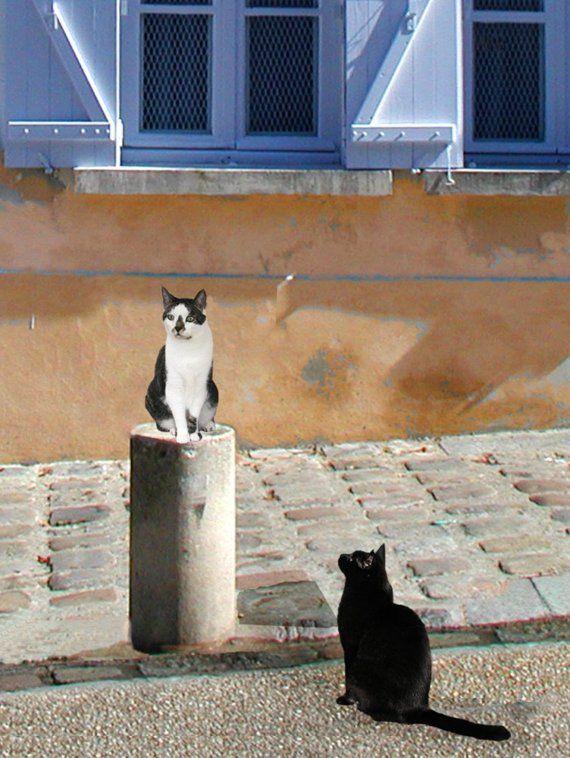 Paris Cat Art Print Montmartre Cats by DeborahJulian on Etsy, $20.00