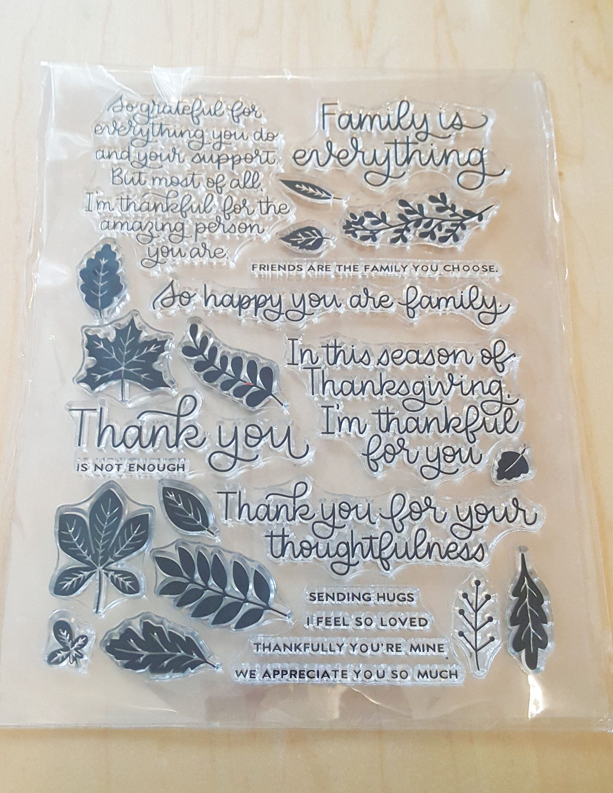 Family is Everything Clear Stamp Set/Clear Stamps/Photopolymer stamp sets/Fall Leaves/Family photos/family pictures/thanksgiving stamps
