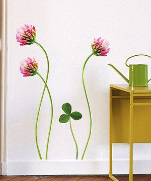 Clover Flowers Wall Decal Set by Nouvelles Images #zulily #zulilyfinds