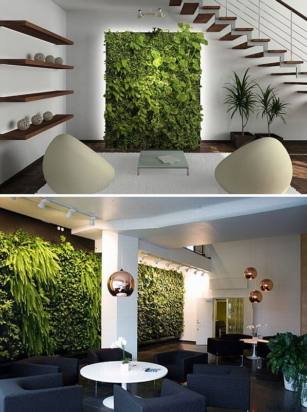 Indoor vertical gardens Indoor living wall herb garden