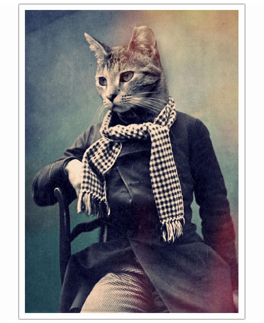 Cat in Scarf VON John Ked now on JUNIQE Home