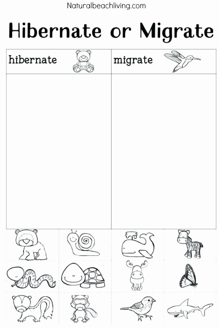 Coloring Pages Hibernating Animals Elegant Preschool Coloring Pages For Winter Cortexcolor [ 1125 x 750 Pixel ]