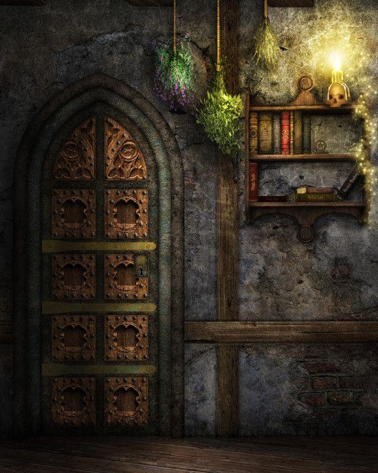 1524 Mysterious Door Photography Backdrop Backdrops Background For Photography