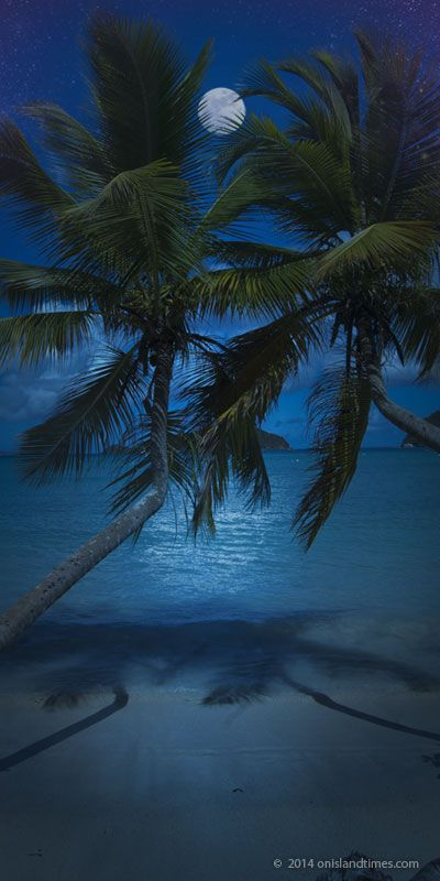 St John's Maho Bay Beach with a full moon over twin palms. US Virgin Islands
