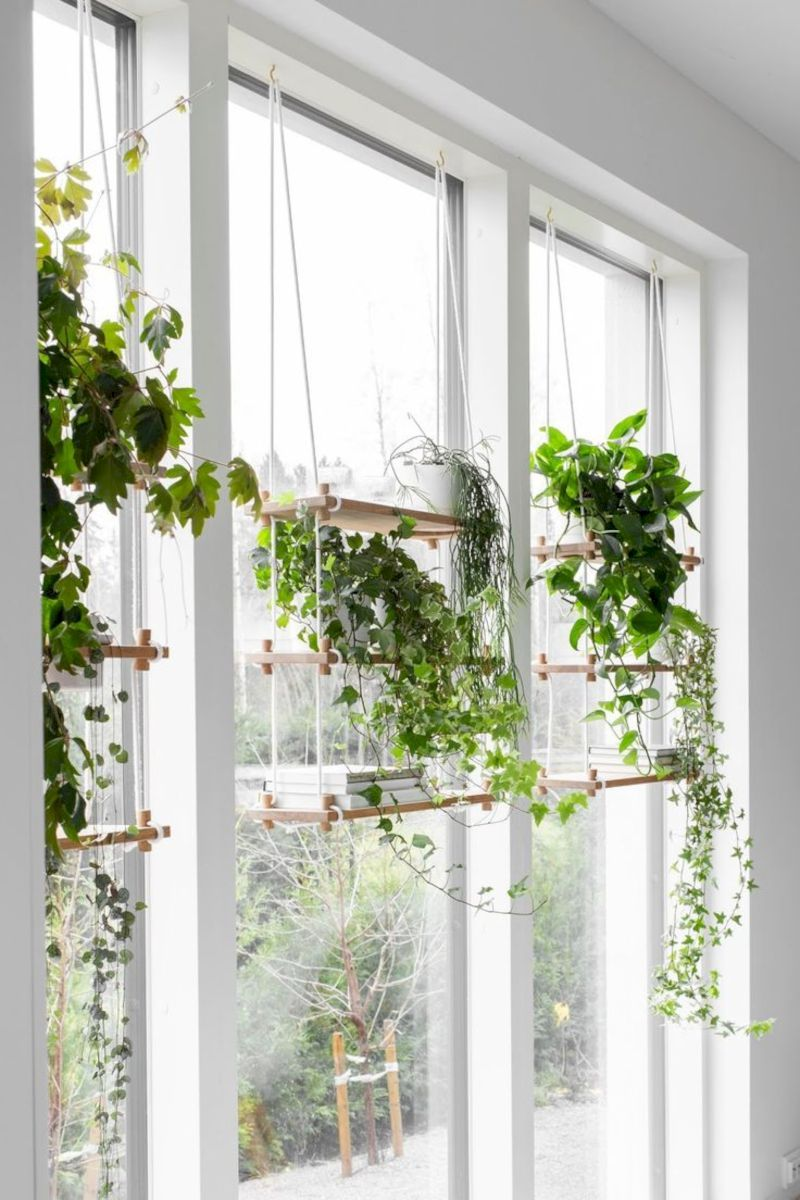 Photo of 3 Beauty Indoor Garden Ideas