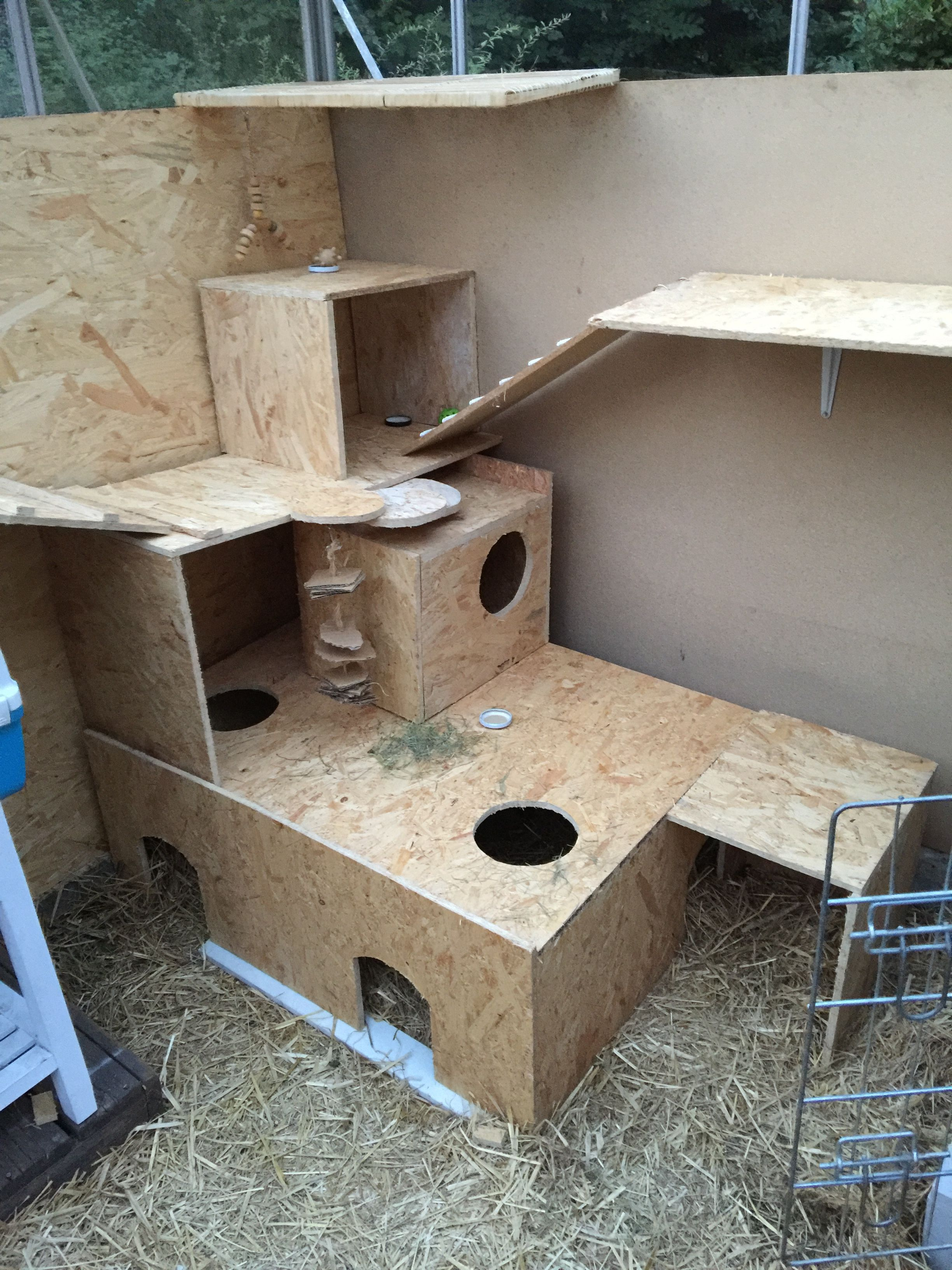 this is the new rabbit play area. still working on it. | rabbit