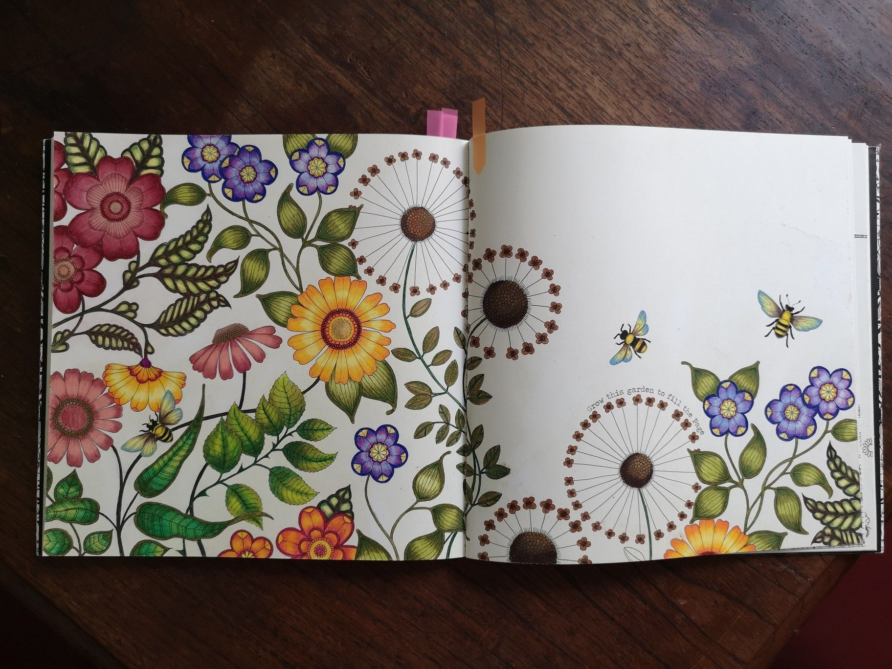 I Thought Of Sharing My Finished Page From December 2017 From Secret Garden Coloring Book By J Secret Garden Coloring Book Coloring Books Gardens Coloring Book