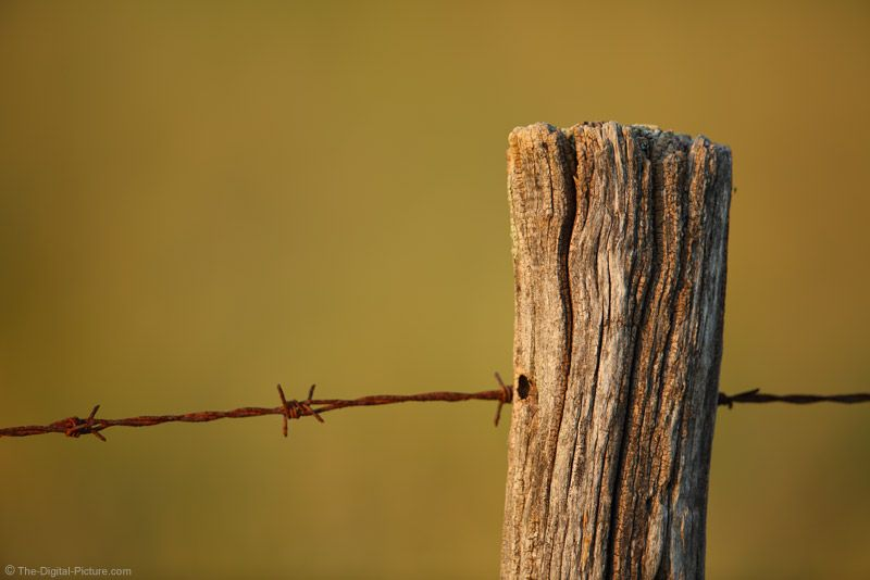 Old Fence Post And Rusty Barbed Wire Fence Post Old Fences Old