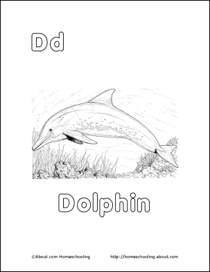 Dolphin Printables, Word Search, Vocabulary, Crossword and ...