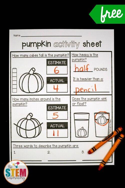 Pumpkin Investigations Math Pinterest Math and School