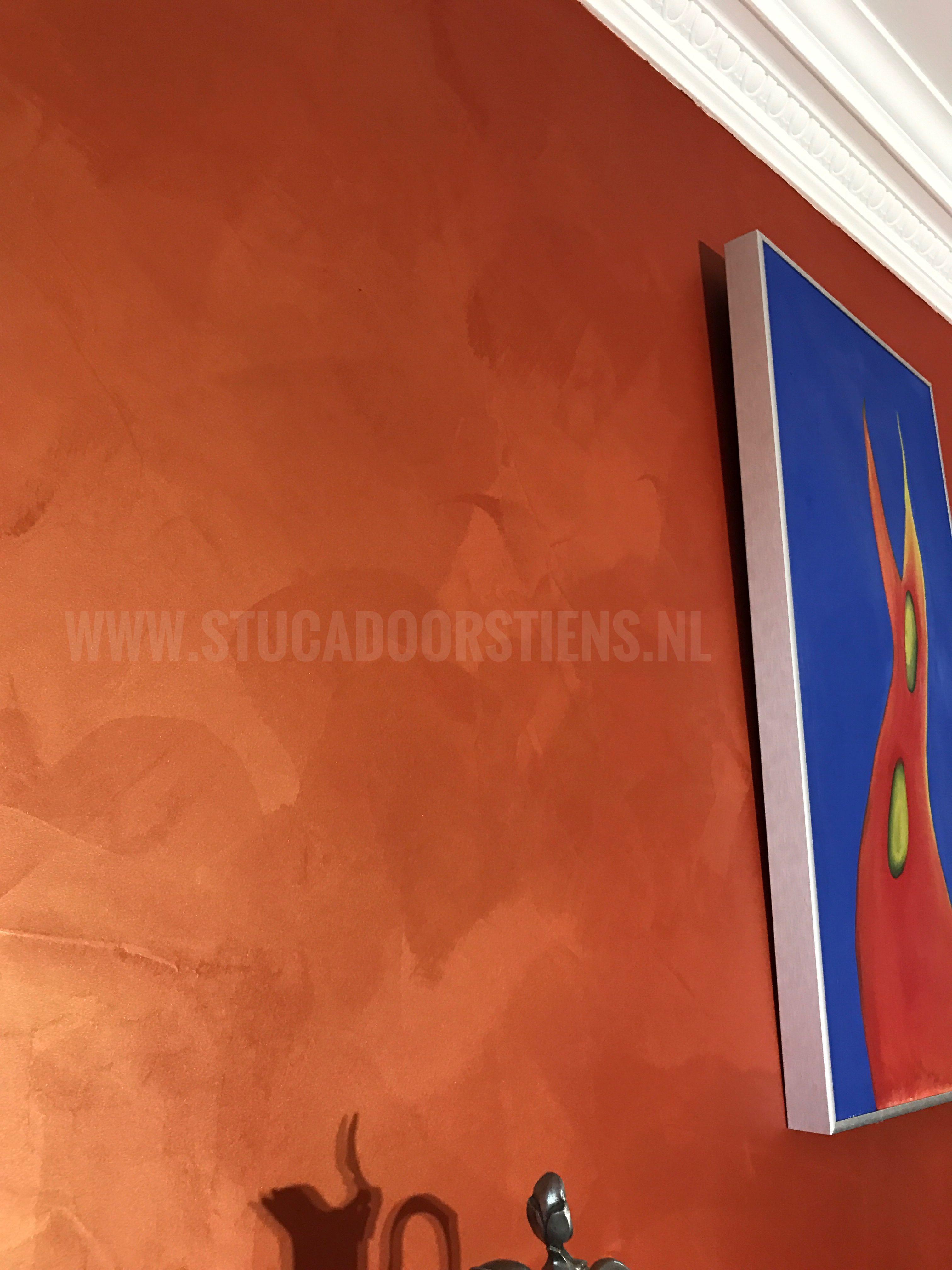 #stucco #brons #metallic #exclusivedesign  www.stucadoorstiens.nl
