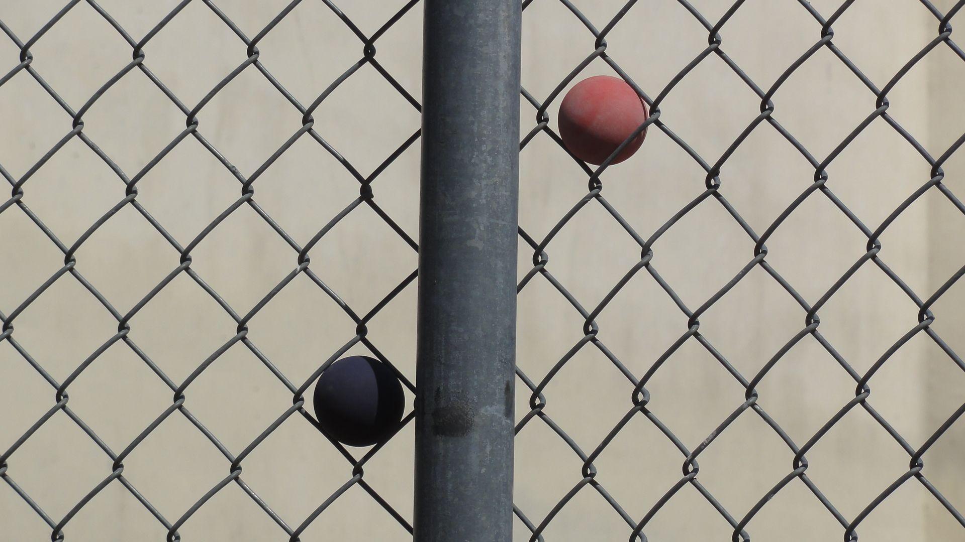 Ball catcher racquetball arizona outdoor