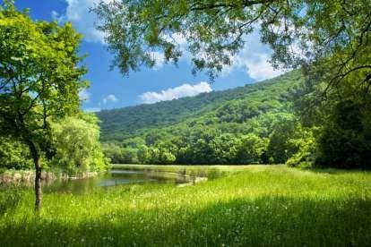Country Scene Summer Landscape Landscape Country Scenes