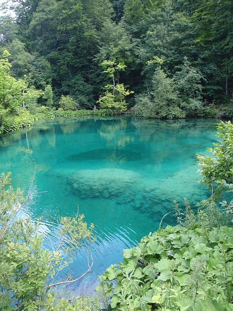 pinterest natural swimming holes in west virginia   Plitvice Falls - Turquoise ponds, Croatia by lgizdavcic on Flickr.