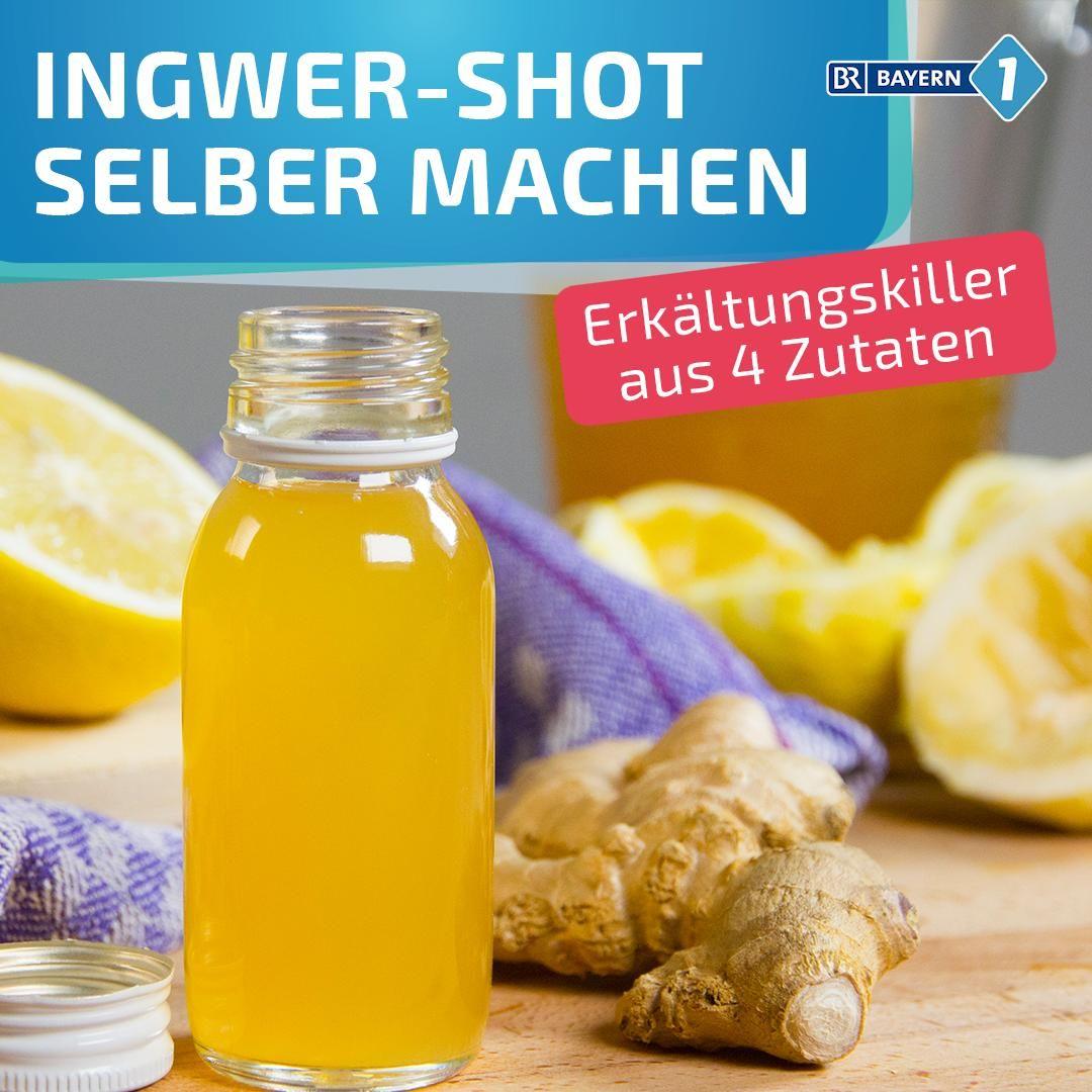 Rezept für hochkonzentrierten Ingwer-Saft, der gesund hält. Und raffiniert schmeckt. Mit Ingwer, Honig, Zitrone. #ingwer #rezept #Erkältungsdrink #Immunbooster