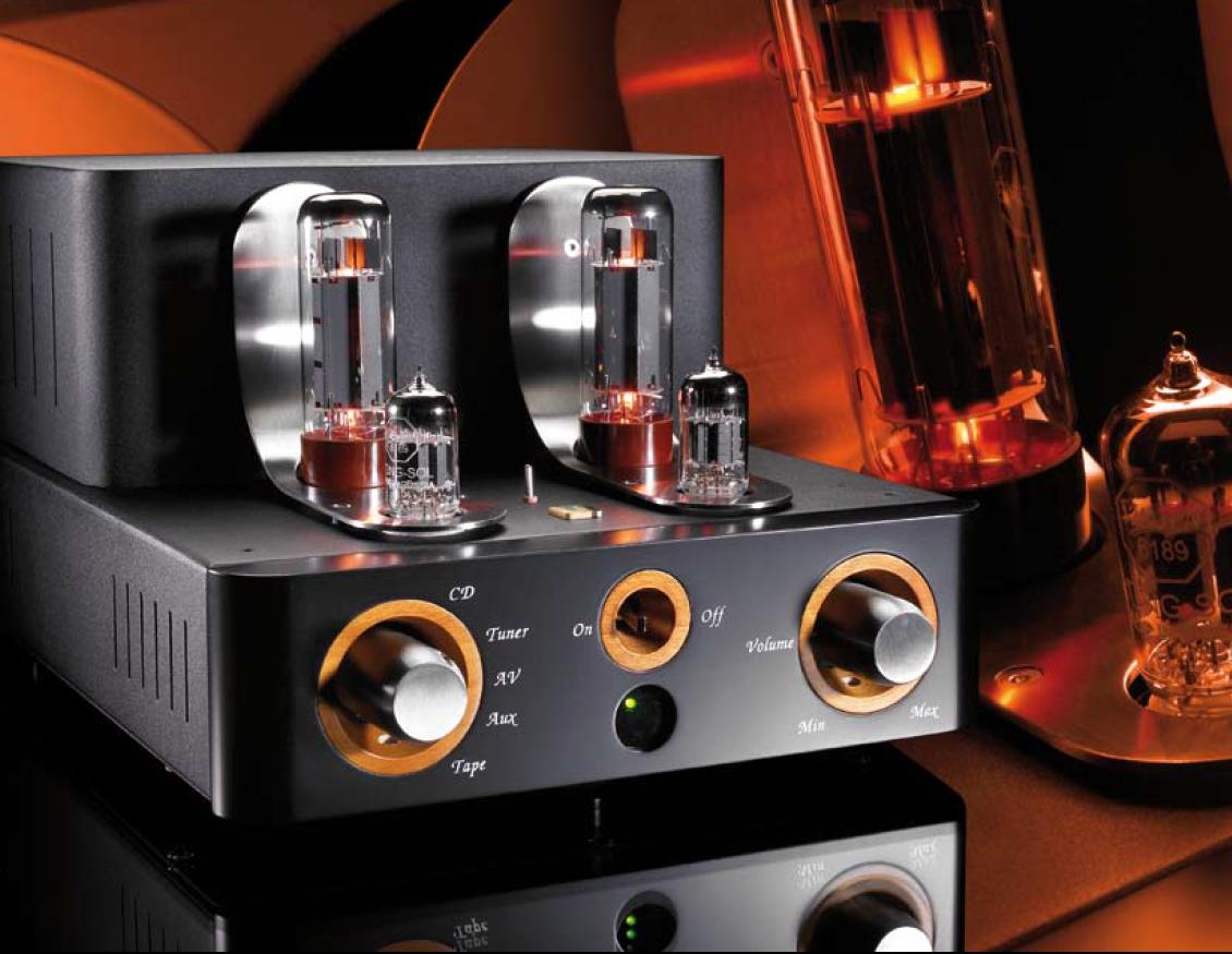 Best 25 Valve Amplifier Ideas On Pinterest Audio