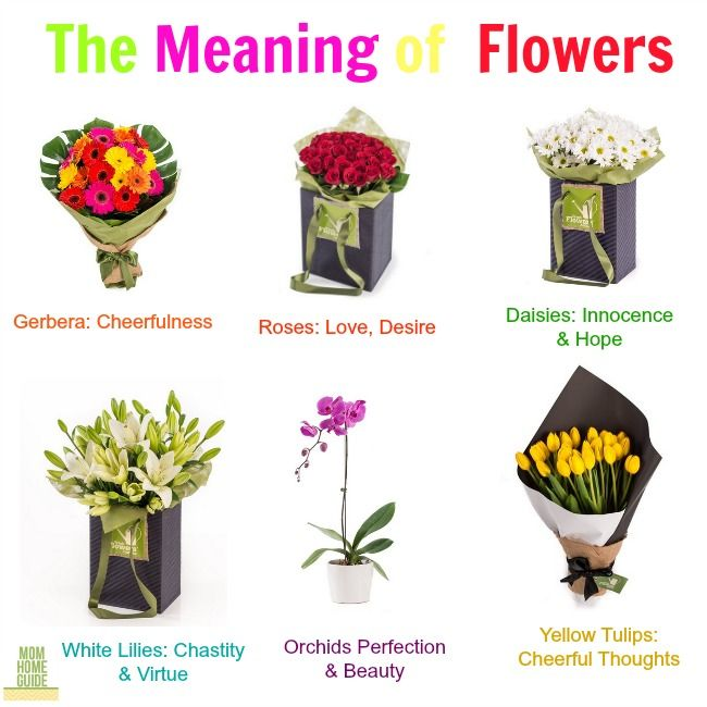 The Meaning Of Giving Flowers Flowers For Mom Flower Meanings Giving Flowers
