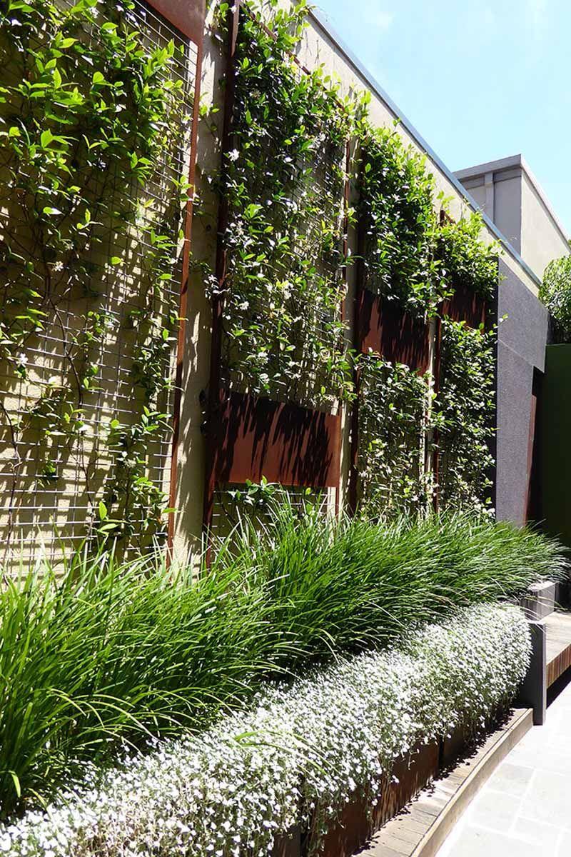 Fremantle Landscape Design Perth Garden Plants Design Landscape Design Australian Garden Design