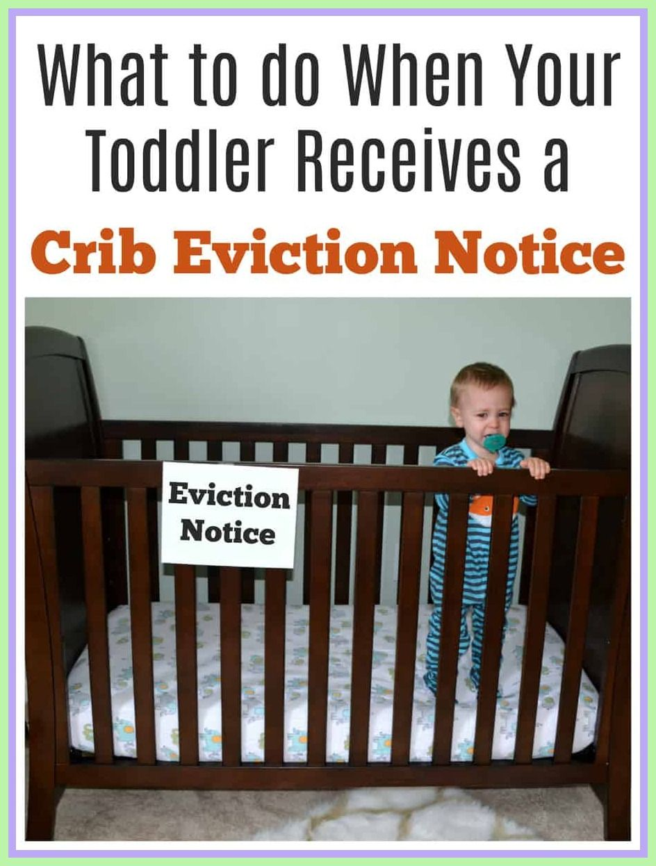50 Reference Of Baby In Crib Eviction Notice In 2020