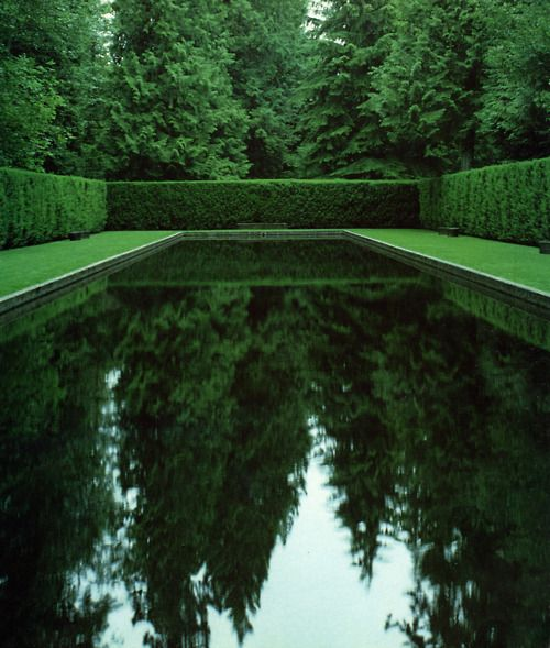 tall hedges surround a reflective pool, making quite a statement.