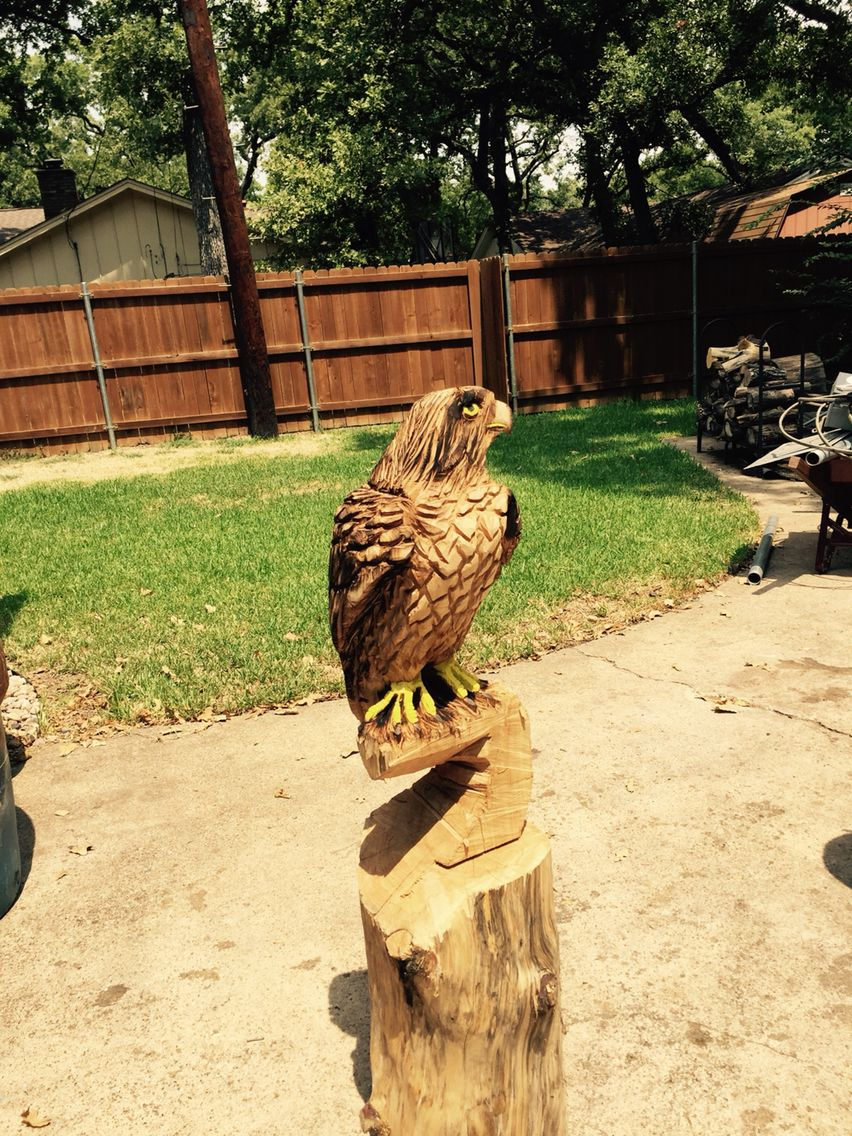Chainsaw carved red tail hawk artist rob banda