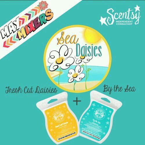 May Mixers - Sea Daisies  https://bmarie.scentsy.us