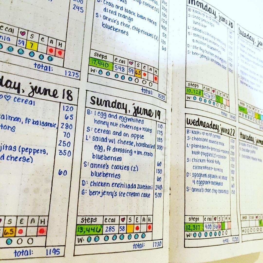 bullet journal food log calorie tracker sleep tracker exercise