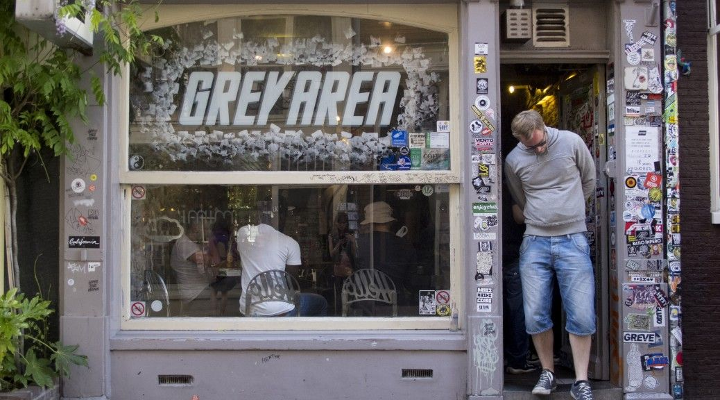Image result for gray area amsterdam