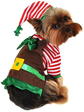 Anit Accessories Workshop Elf Dog Costume Medium 16 Inch