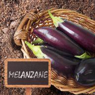 #melanzane #distagione #orto
