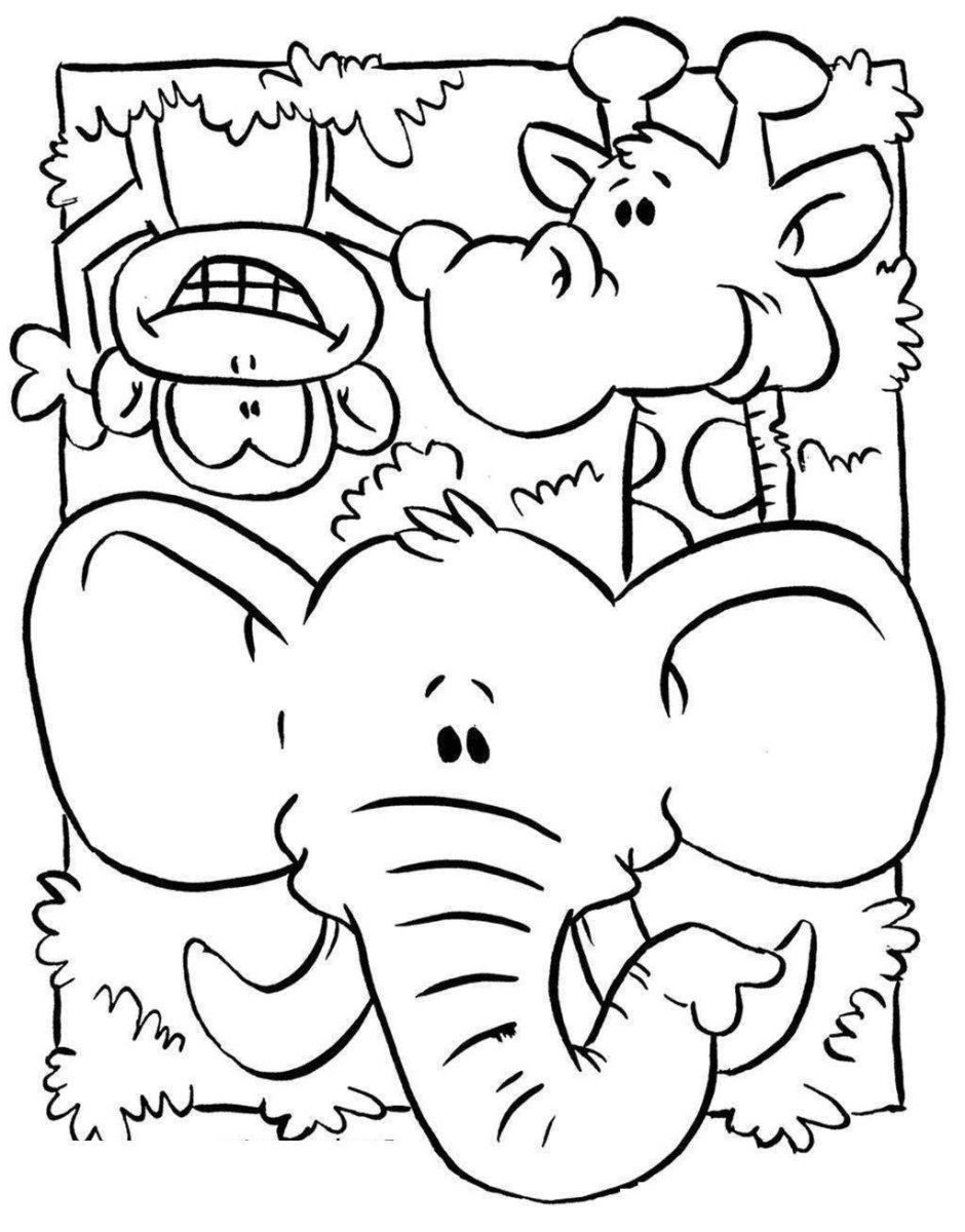 Jungle Animal Coloring Pages Jungle Animal Coloring Pages Animals