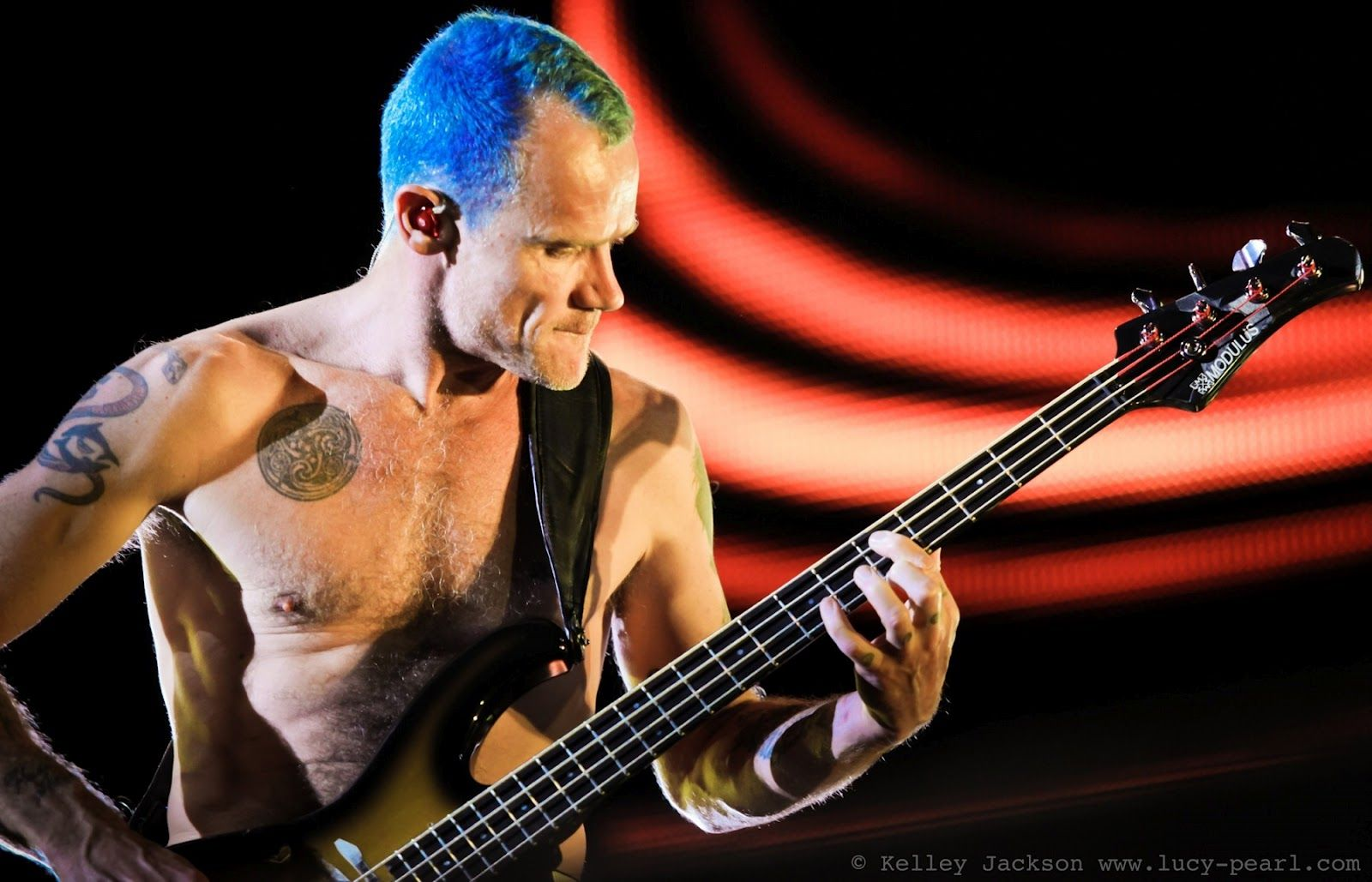 flea on bass Anthony kiedis, John frusciante, Ebass