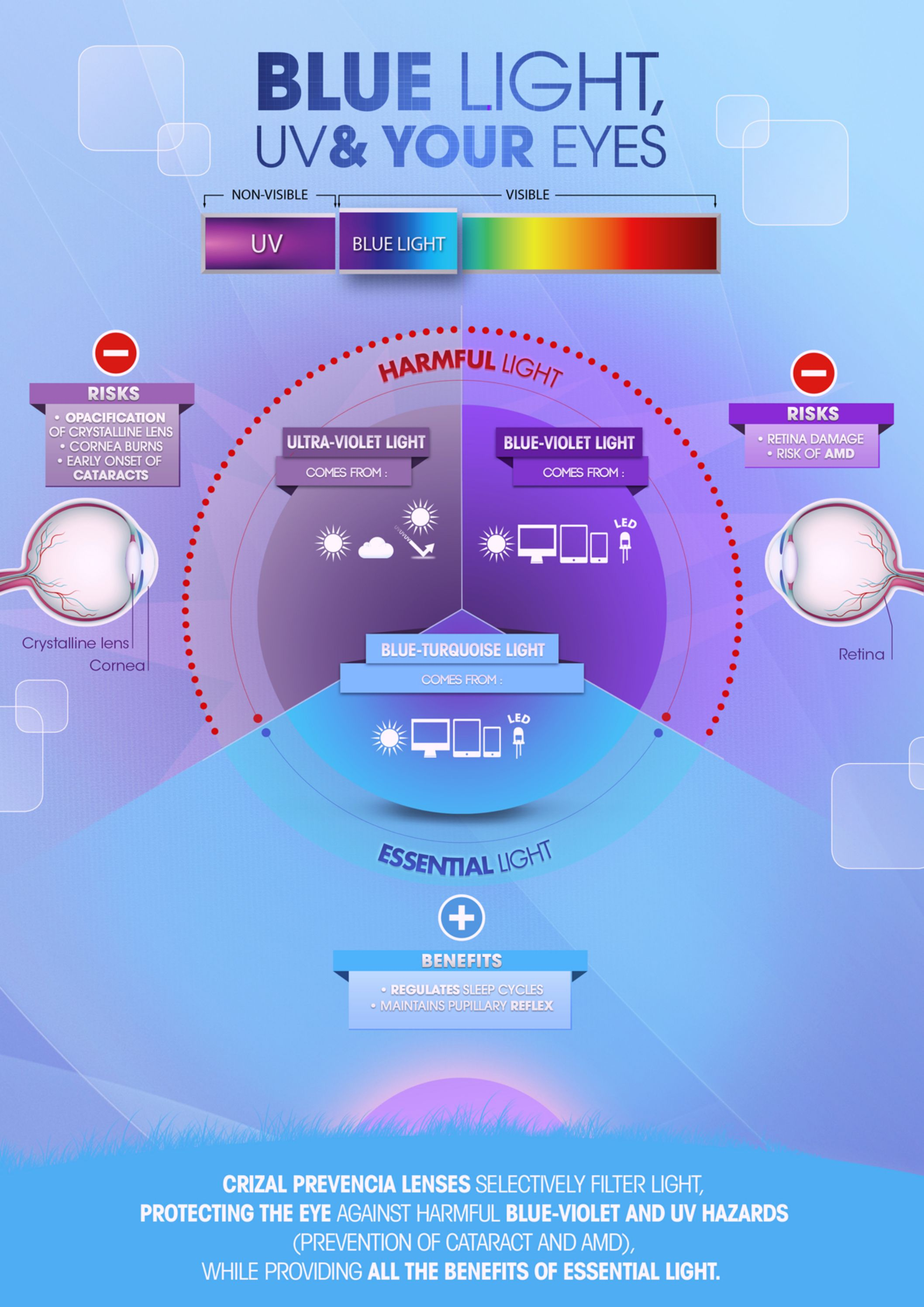 Blue light UV u your eyes See in the infographic the harmful and