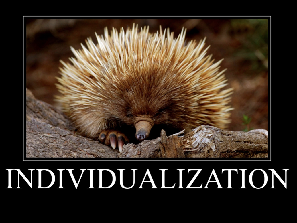 The Genius Of Your Individualization Talent Is That You See Each And Every Person And A One Of A Kind Dis Australian Animals Echidna Australian Animals Facts