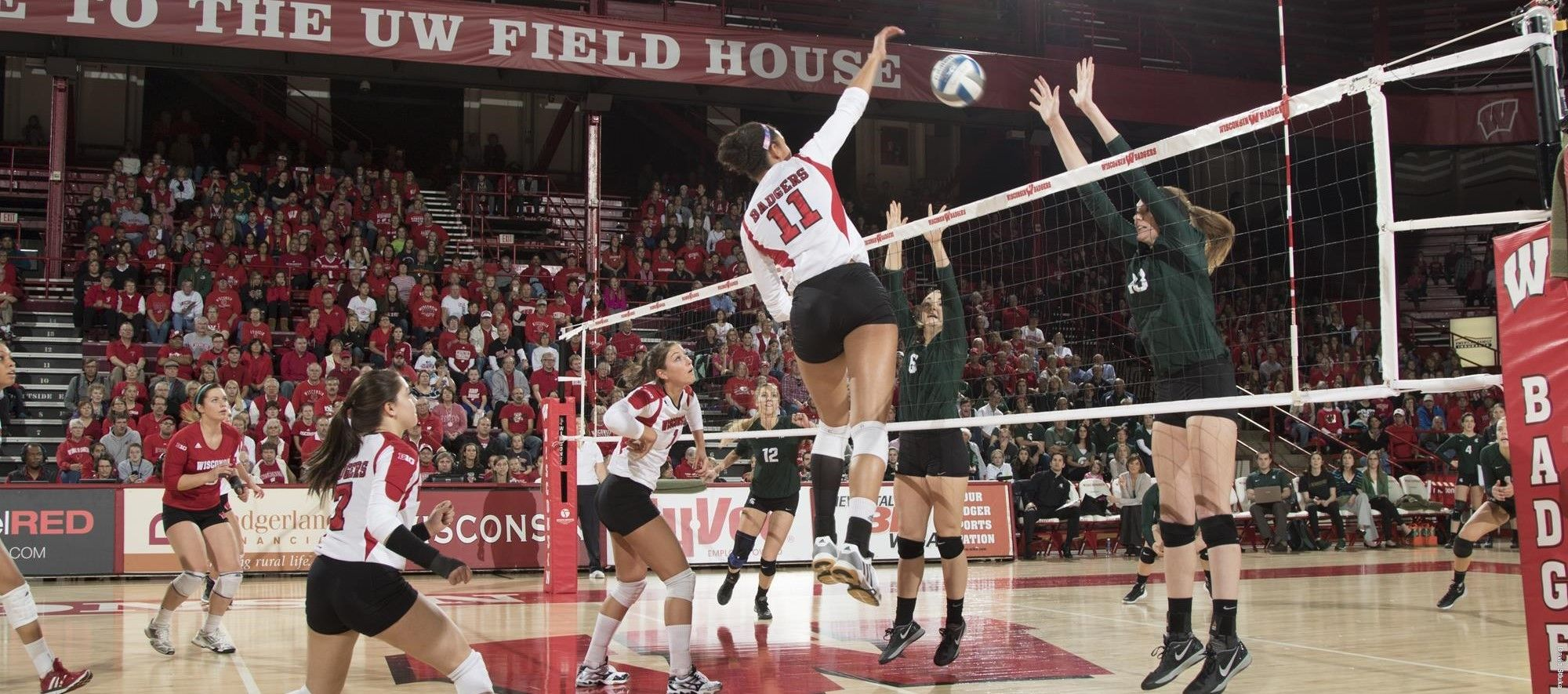 Carlini Nelson Earn All Big Ten Honors Big Ten Volleyball News Wisconsin Badgers