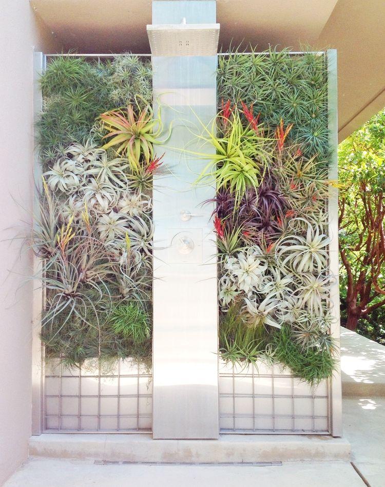 Brandon Pruett, Living Wall, Green Wall, Herb Wall, San Francisco ...