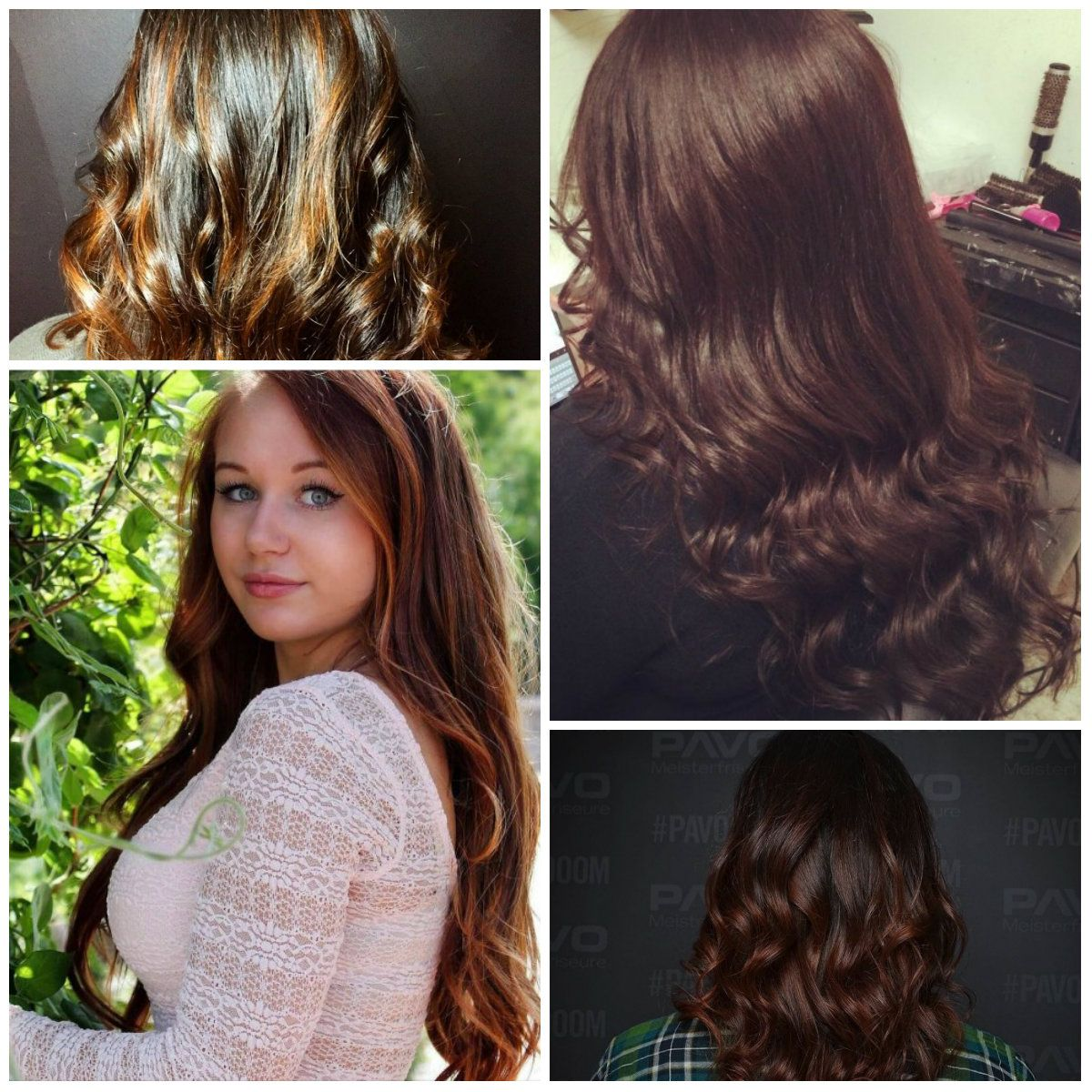 New Hair Color Ideas Hairstyles Pinterest Chestnut Brown Hair