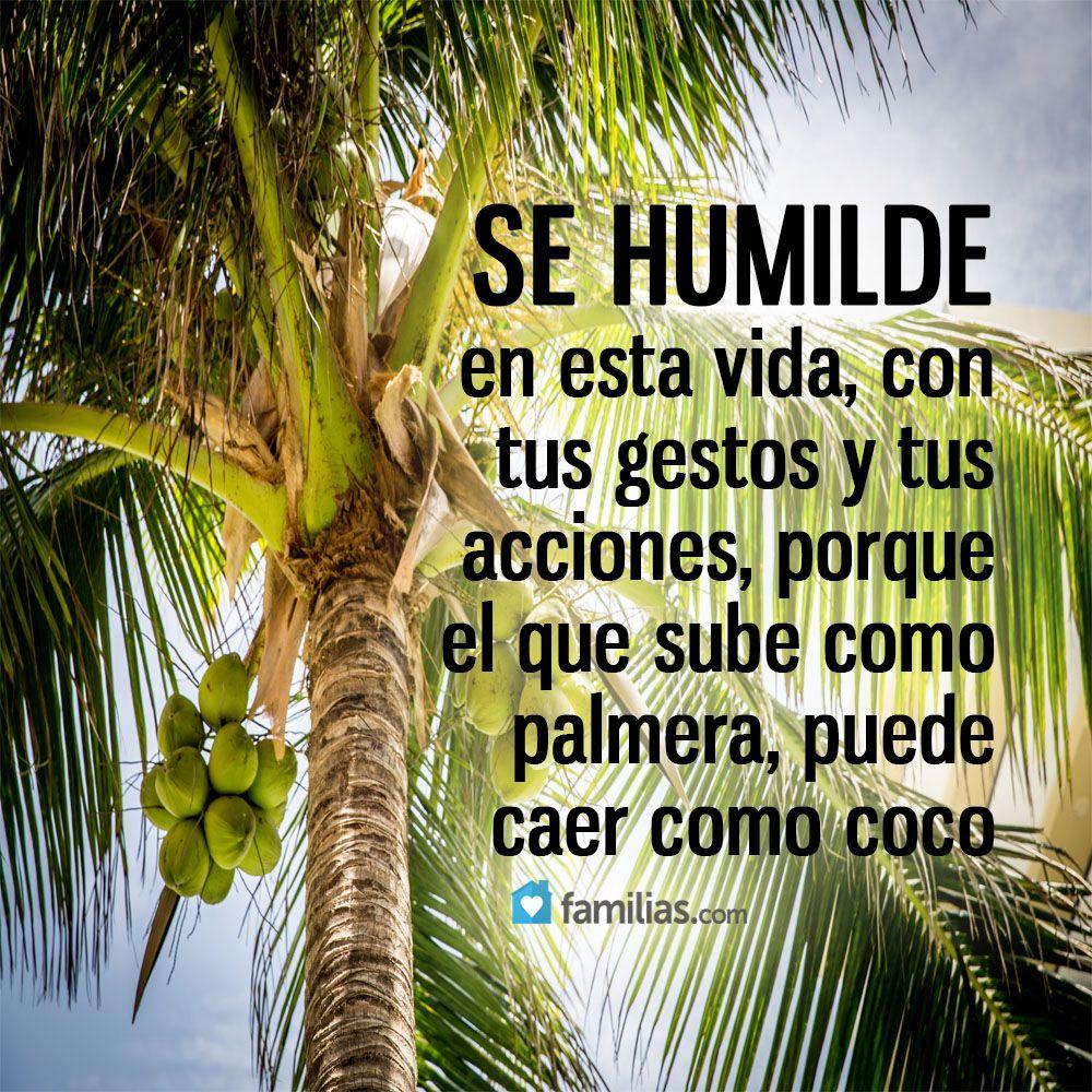 Gracias Dios Por todo... seguire siendo humilde y agradecida por ...