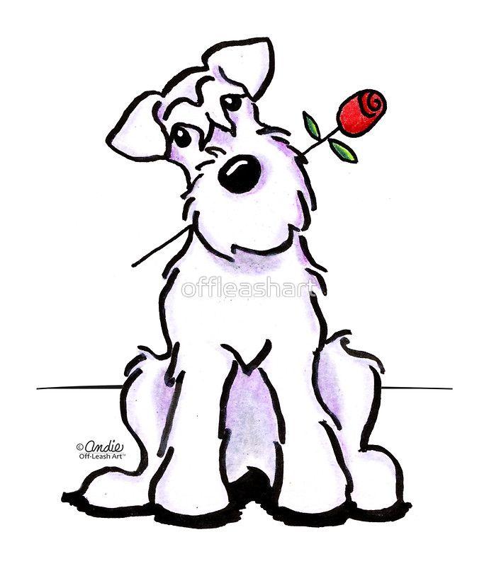 White Schnauzer Sweetheart Lámina Fotográfica My Schnauzer