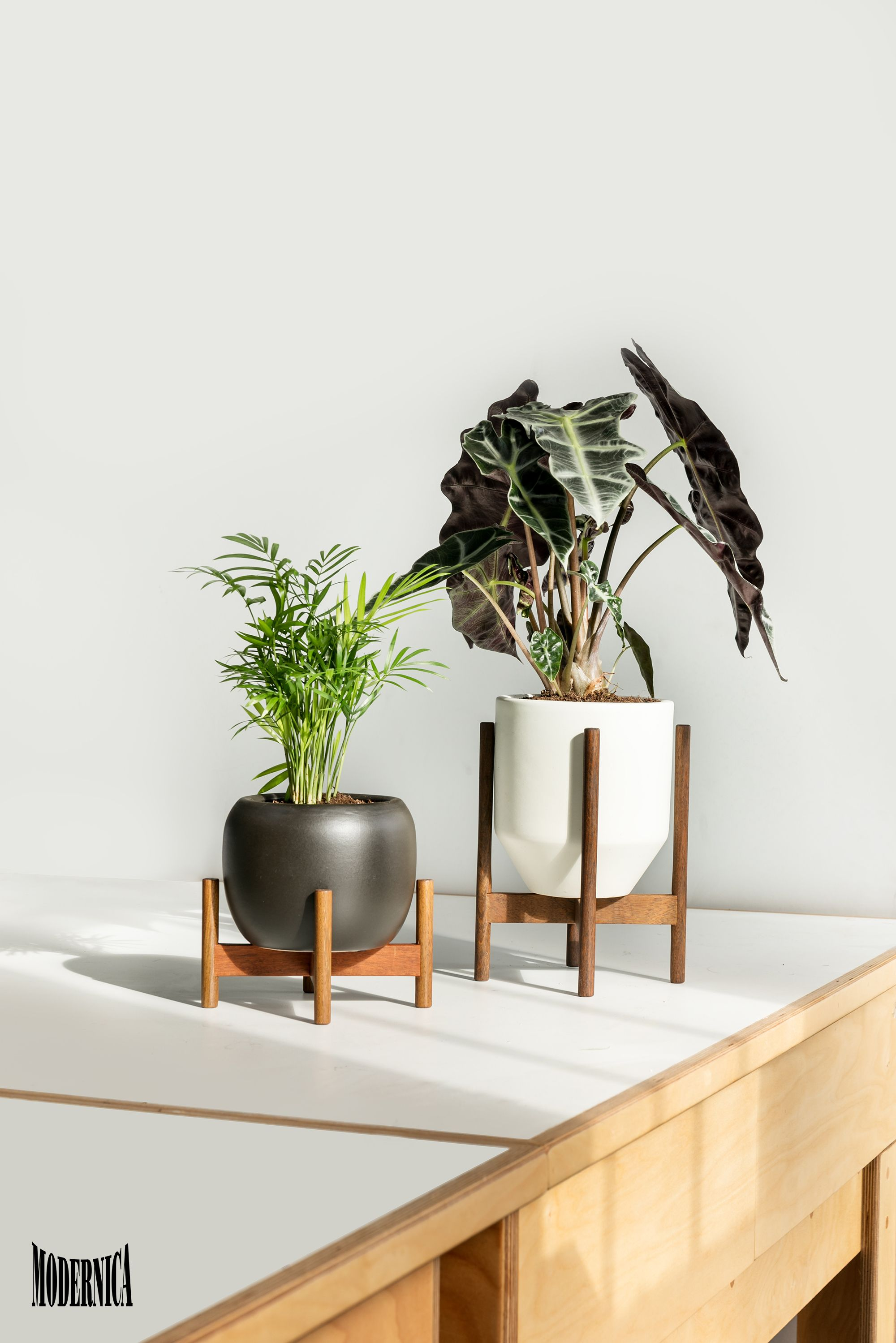 Case Study Ceramics Table Top Ceramics Home Decor Inspiration Decor Decor Inspiration