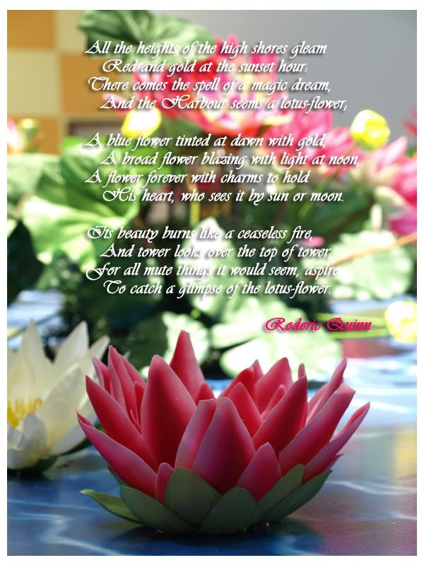 Poems About Lotus Blossoms Google Search Buddhist Pinterest
