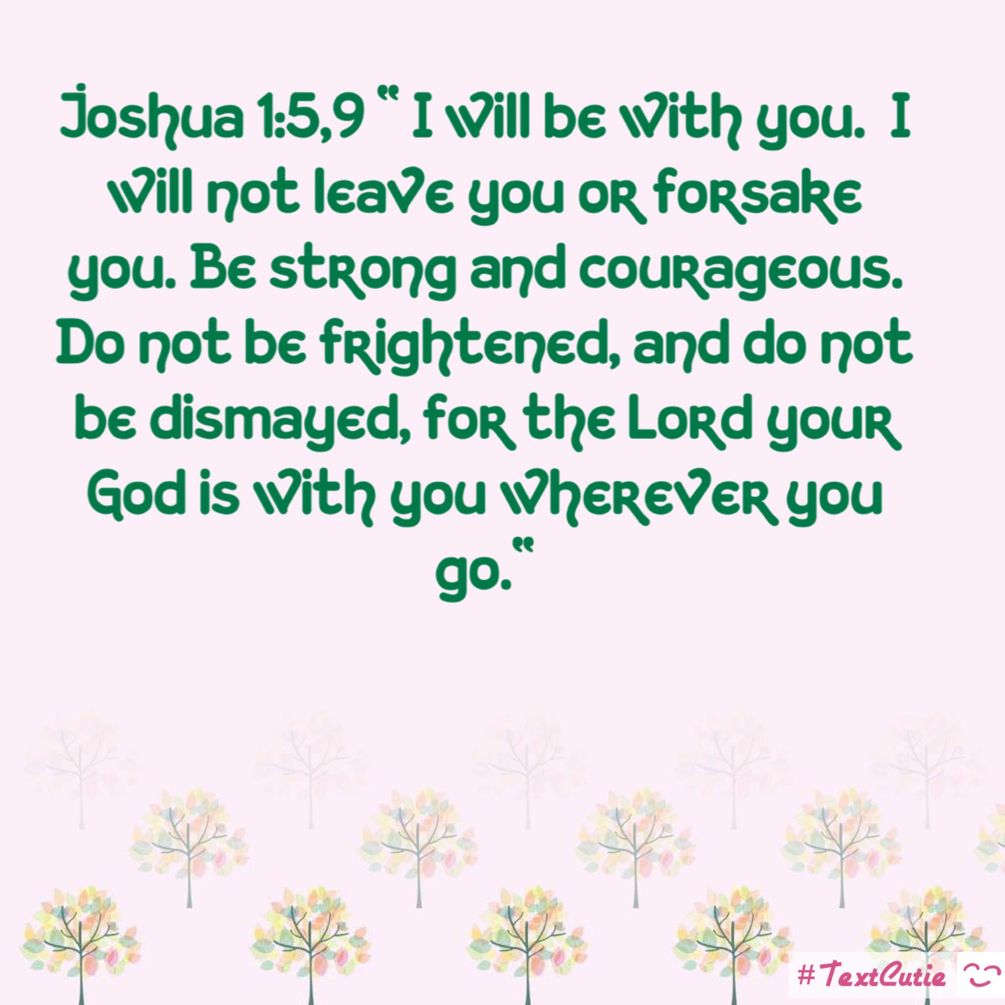 Joshua 1:5 I will not leave you or forsake you Bible verse vinyl decal sticker White Black Red Blue